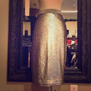 Silver Sequins pencil skirt- NWT